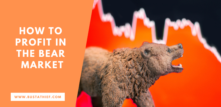 How To Profit In the Bear Market